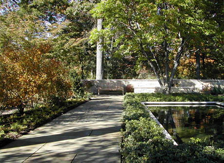 View of the comtemplative garden