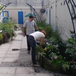 Man and woman work on initial plantings