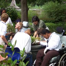 Group of people of various abilities participating in potting of plants